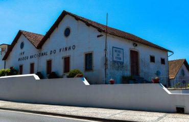 Museu do Vinho Alcobaça